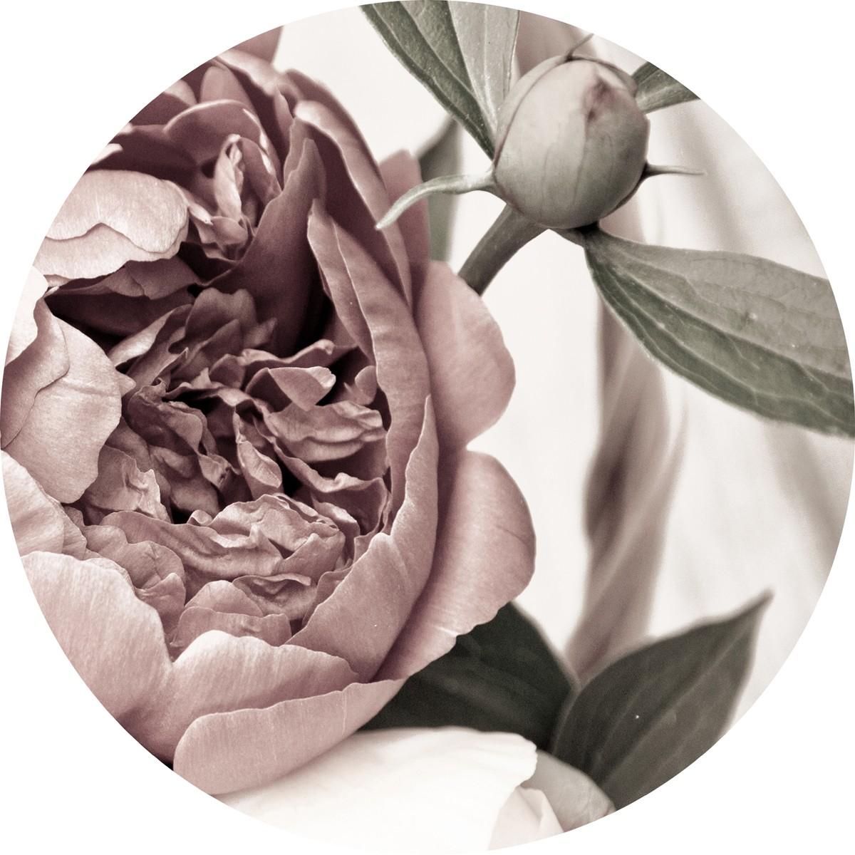 Bild Malerifabrikken 'Opulent 2' Circle Art